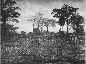 Palenque Palace from plaza in 1888